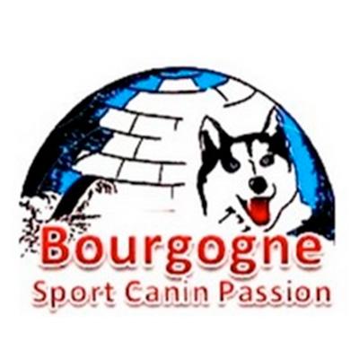 Bourgogne Sport Canin Passion