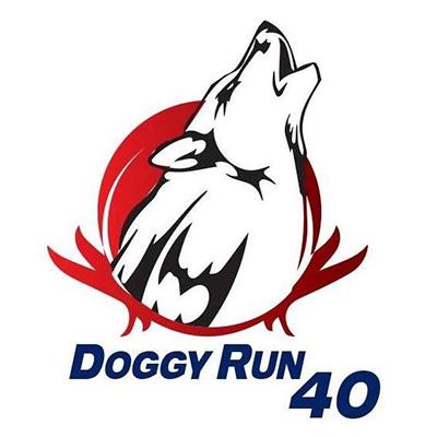 Doggy Run 40